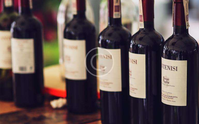 Winemaking – the Process Behind our Award-Winning Wines